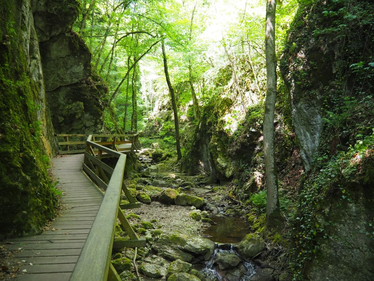 #Staycation – Ausflugstipps rund um Wien (1): Johannesbachklamm
