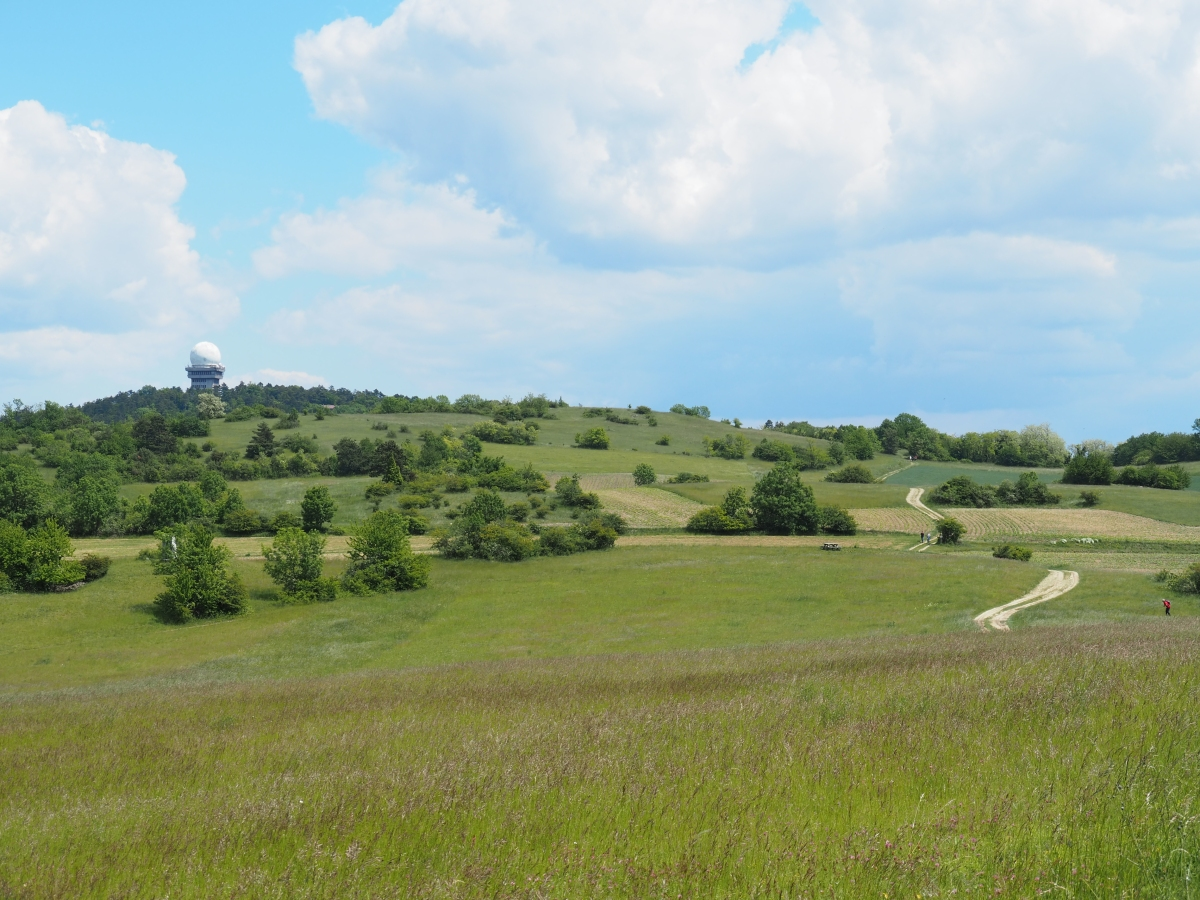 #Staycation – Leiser Berge: Wanderparadies im Weinviertel